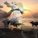 Carreras de Caballos de San Lúcar de Barrameda